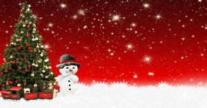 Kerstborrel? Huur een inspirerende spreker